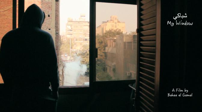 My Window (Bahaa El Gamal) Egipto. Imagineindia 2018